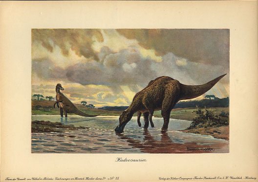A drinking hadrosaur from I think the reference of the