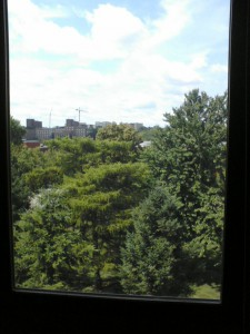 The view from my office window, 101K MacLean Hall.